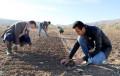 Tarım Bilimleri Bölümü Doktora Programı Açıldı